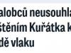 neusouhlasi_kuratko-blesk170220