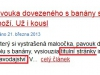titulni_tv-idnes130322